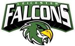 falcons _logo